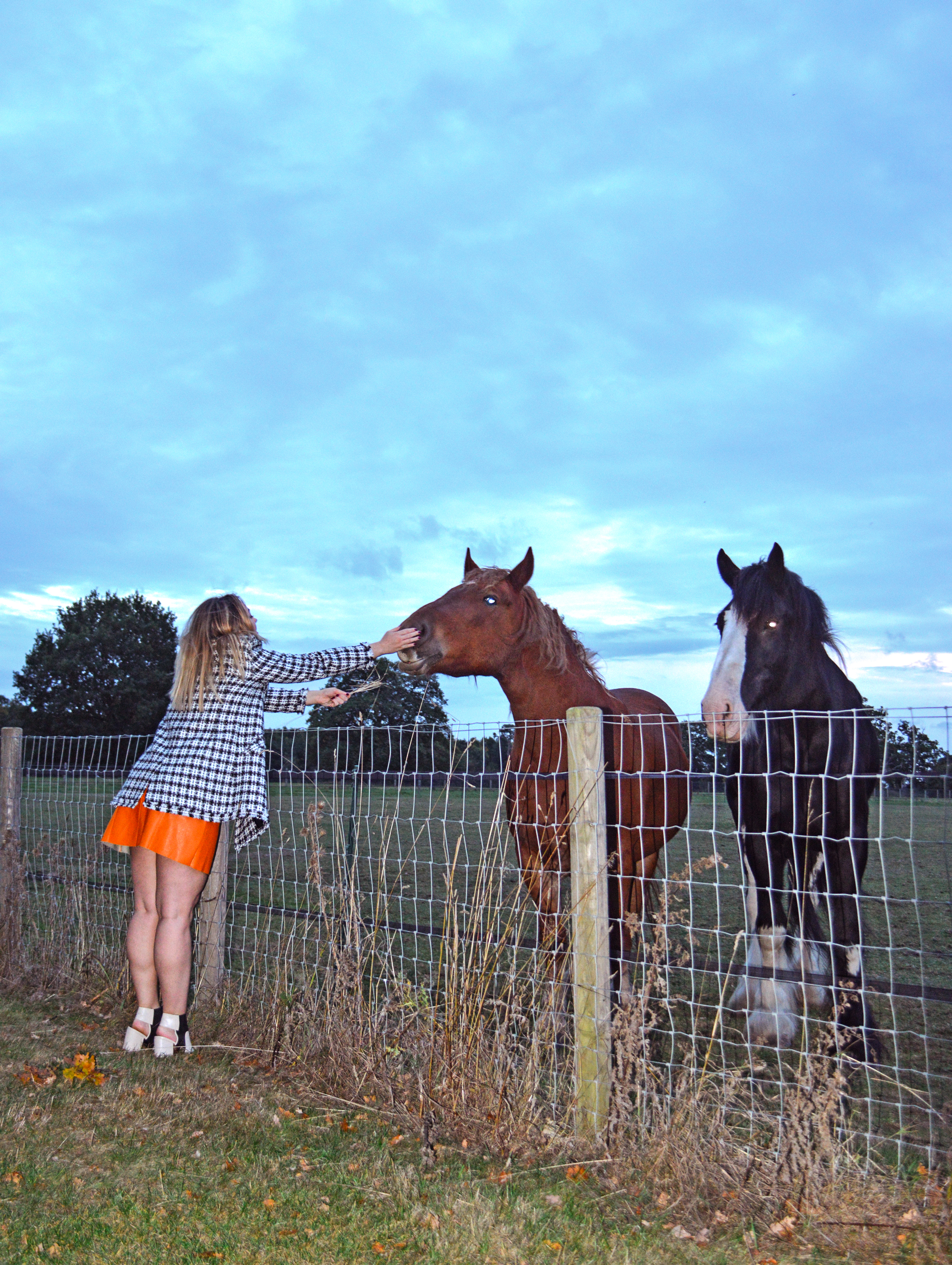 Hannah strokes a horse's nose. Wearing grey ankle boots, black and white check boucle jacket and orange faux leather skirt, all by River Island